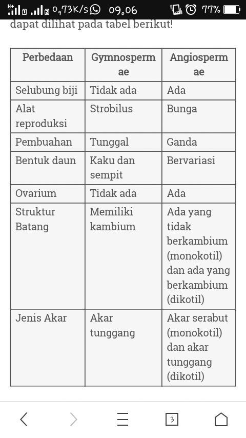 Angiospermae Adalah : angiospermae, adalah, Perbedaaan, Antara, Angiospermae, Gyimmnospermaei, Adalah, Brainly.co.id