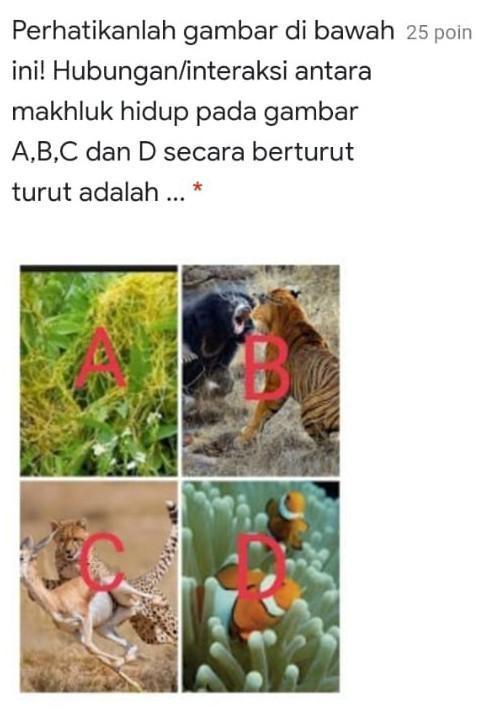 Gambar Predasi : gambar, predasi, A.Simbiosis, Parasitisme,Kompetisi,Predasi,Simbiosis, Komensalismeib.Simbiosis, Brainly.co.id
