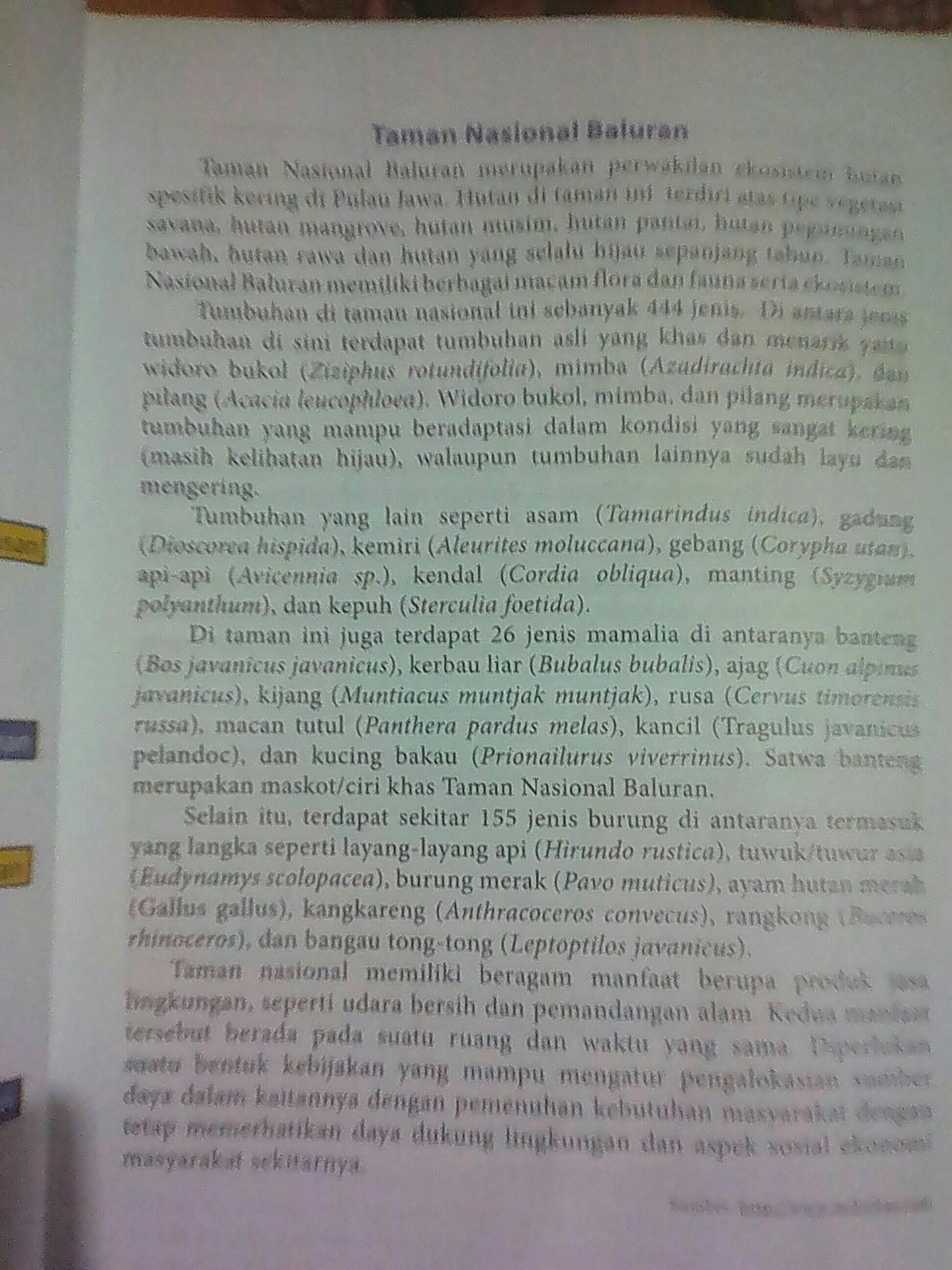 Temukan 2 Contoh Kalimat Simpleks Dalam Teks Di Atas : temukan, contoh, kalimat, simpleks, dalam, 1.temukan, Contoh, Kalimat, Simpleks, Diatas.2., Tmukan, Majemuk, Setara&, Brainly.co.id