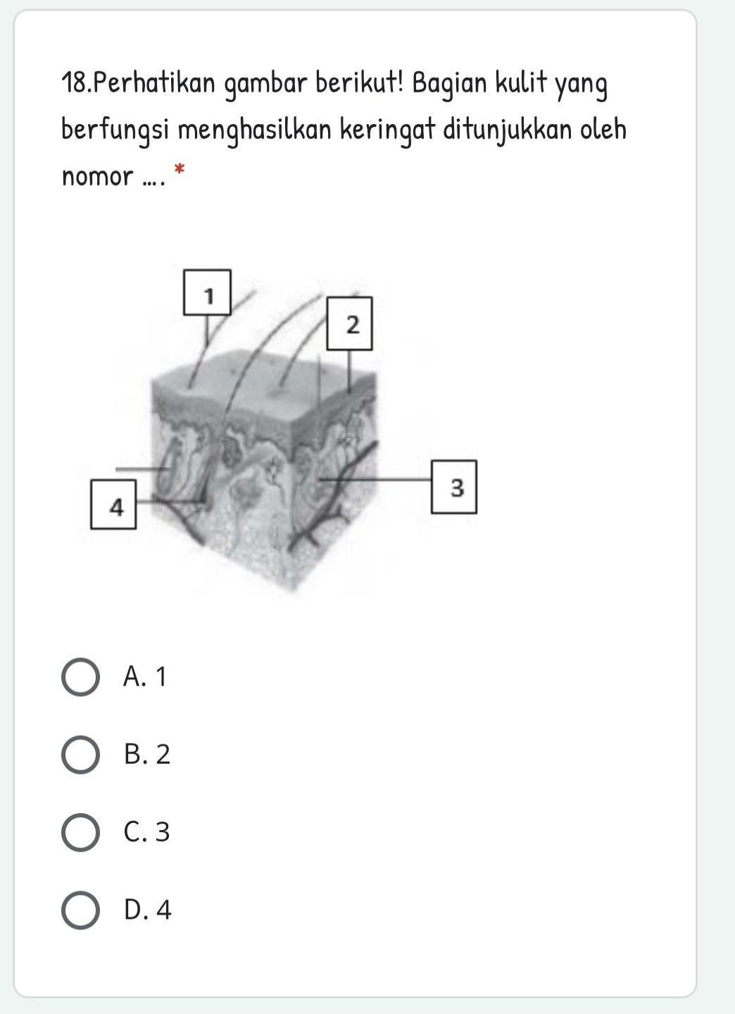 Bagian Kulit Yang Berfungsi Menghasilkan Keringat Ditunjukkan Oleh Nomor : bagian, kulit, berfungsi, menghasilkan, keringat, ditunjukkan, nomor, Tolong, Bantuu,, Dikumpulkan, Hikss:(, Brainly.co.id