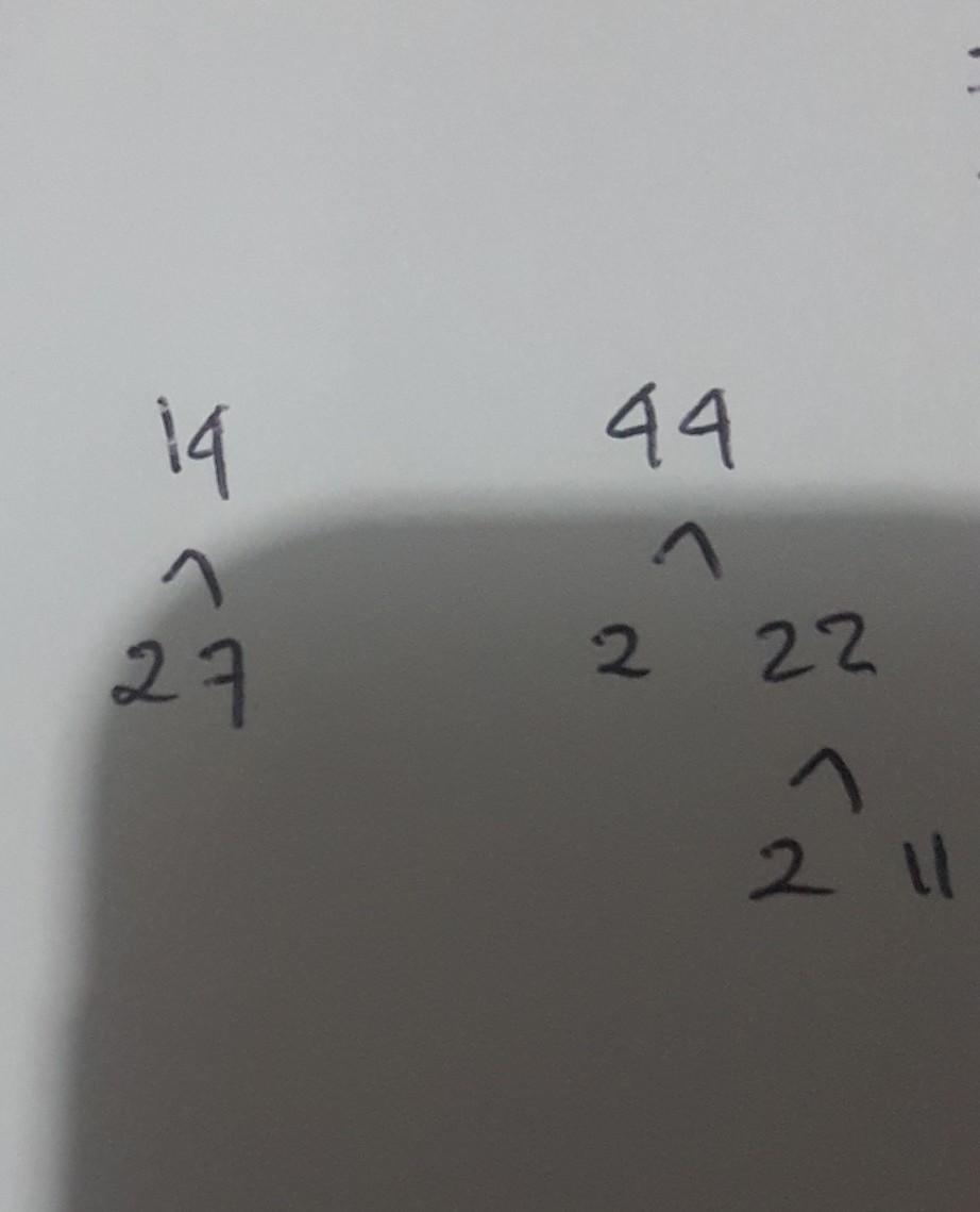 Bilangan 14 : bilangan, ..buatlah, Pohon, Faktor, Untuk, Menentukan, Faktorisasi, Prima, Bilangan, Brainly.co.id