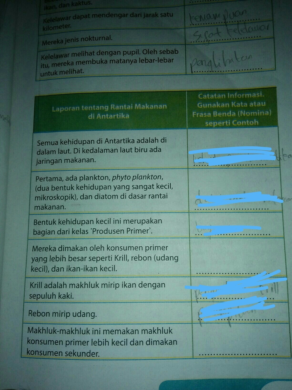 Laporan Tentang Kelelawar : laporan, tentang, kelelawar, Laporan, Tentang, Rantai, Makanan, Antartika., Catatan, Brainly.co.id
