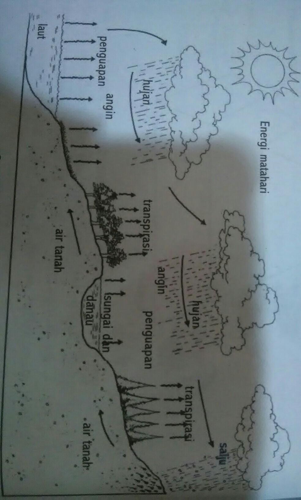 Proses Pengembunan : proses, pengembunan, Jelaskan+proses+terjadinya+siklus+air+tanah, Brainly.co.id