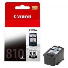 CANON INK CARTRIDGE PG810 BLACK ORIGINAL