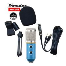 Womdee Buah Mikrofon Kondensor, Logam Vocal Mikropon Kompatibel dengan Komputer Buah Laptop, sempurna untuk Podcasting/Singing/Permainan/Obrolan Suara Di Skype Msn/Youtube/Perekaman Yahoo, biru-Internasional