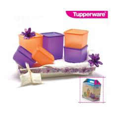 Tupperware Summer fun ungu - orange  6pcs/set