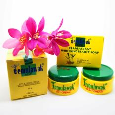 Temulawak Whitening Cream Day + Night + Transparent Soap - Low GRADE - Versi KW - Krim Temulawak Pemutih Wajah + Sabun Whitening Small - 1 set