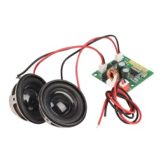 MagicWorldMall Profesional Auto Bagian Bluetooth Audio Amplifier Board Double Speaker Receiver Self Balance Mobil-Intl