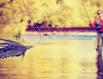 Fly Fishing: It's All About Food, Rest, and Sex