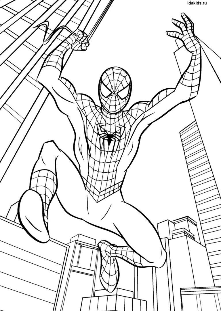 Раскраски Человек паук Новый