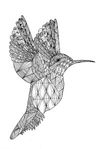 Birds - Free printable Coloring pages for kids7