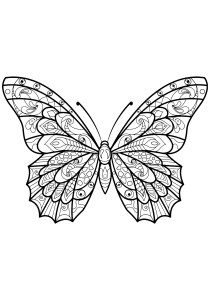 Butterflies - Free printable Coloring pages for kids8