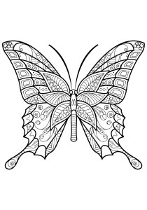 Butterflies - Free printable Coloring pages for kids17