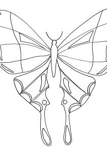 Butterflies - Free printable Coloring pages for kids0