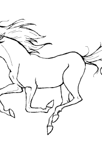 Horses - Free printable Coloring pages for kids14