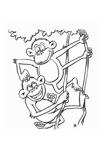 Monkeys - Free printable Coloring pages for kids18