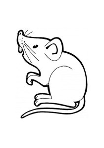 Mouse - Free printable Coloring pages for kids13