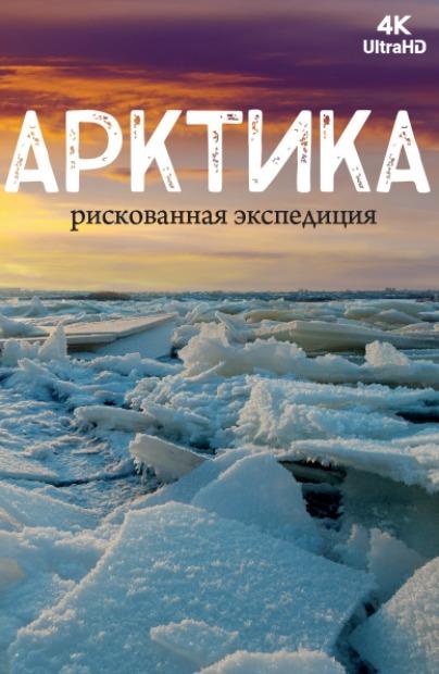 Арктика. Рискованная экспедиция 2018