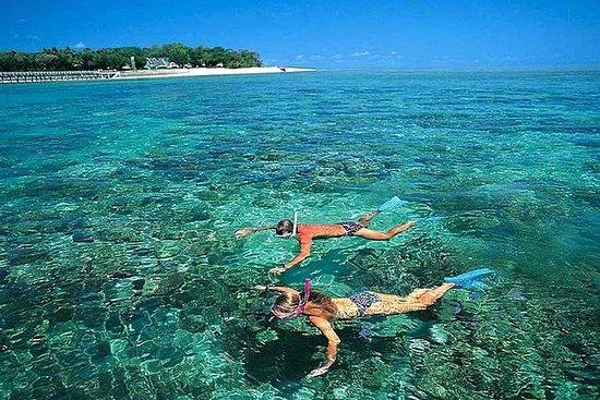 Cham Island Cu Lao Cham