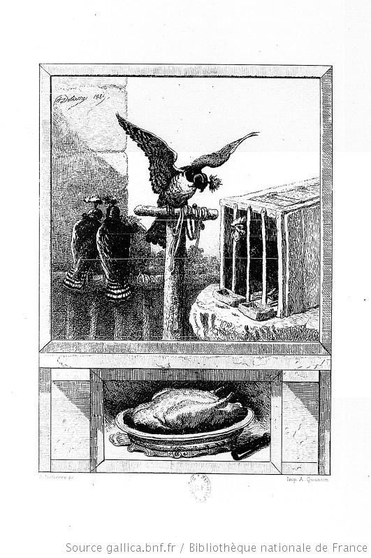 Le Faucon Et Le Chapon : faucon, chapon, Gravure, Fables, Fontaine, Faucon, Chapon, Education, Environnement,, Nature,, Patrimoine