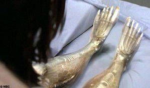 bionicNBC1105-468x277.jpg