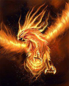 Phoenix Renait De Ses Cendres : phoenix, renait, cendres, Phoenix,, Cendres, Naît, Légende, Shéliak