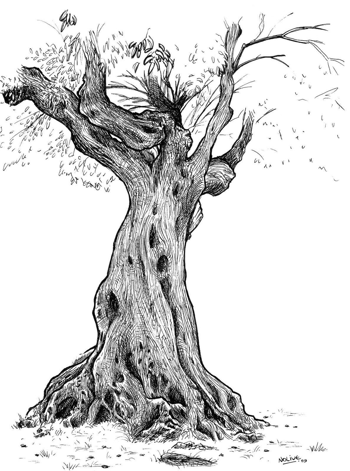 D cembre 2012 art et tique et pique mots et gammes for Faux olivier arbre