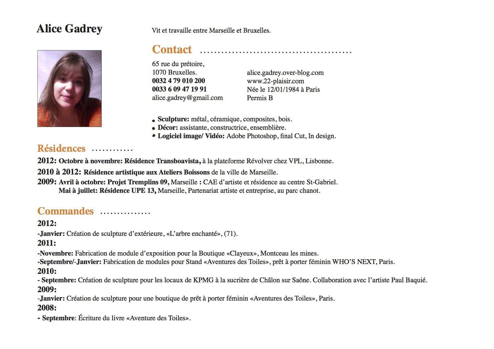 Professional Cv Online Resume Template Online Maker Create For Cool