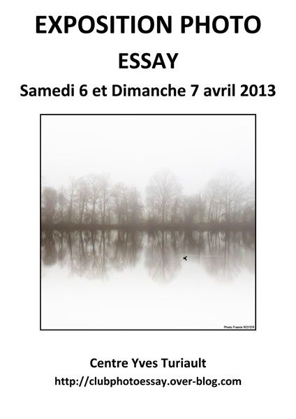 Exposition-Essay--2013.jpg