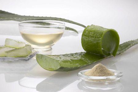 Le varie forme in cui l'Aloe Vera è reperibile in commercio: foglie,