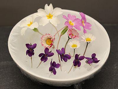 Fleurs Comestibles La Cuisine Des Jours