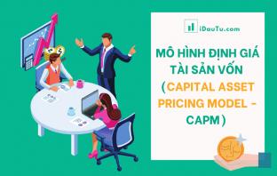 Mô hình định giá tài sản vốn (Capital Asset Pricing Model - CAPM)