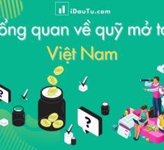 Tổng quan về quỹ mở tại Việt Nam
