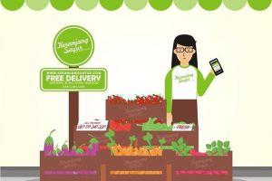 supplier sayuran