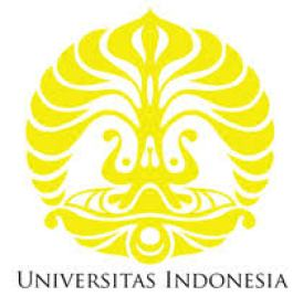 internasional university