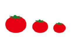 3つのトマトのイラスト