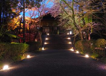 お寺の夜景