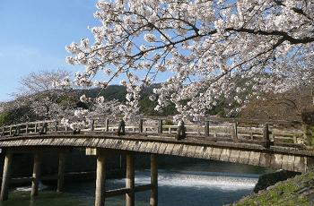 京都 桂川の渡月橋