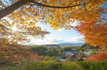 紅葉の間から見える山寺