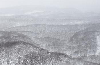 雪で霞む山々