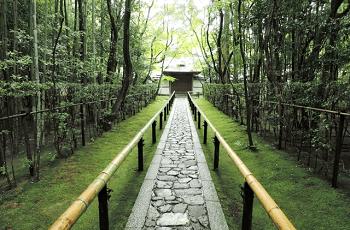 林の中の寺
