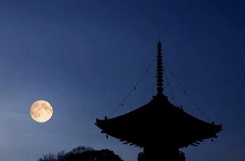 満月と五重塔の影