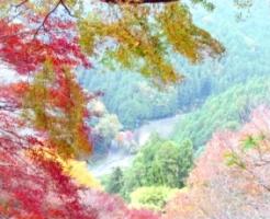 紅葉した吉野山
