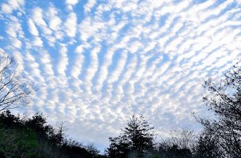 山の上の鰯雲