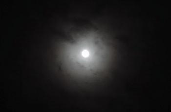 薄く霞んだ月
