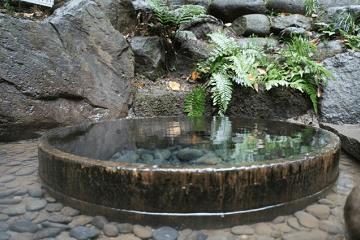 井戸水と緑の葉