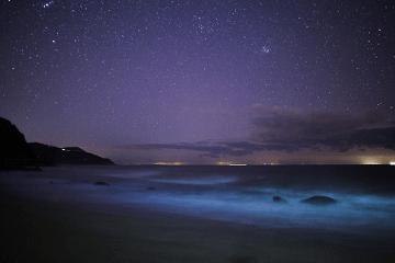 夏の夜の星々と海