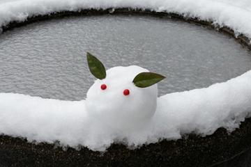 水甕の縁の雪兎