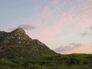 Slangkop, Kommetjie. (Copyright © 2015 by Chesney Bradshaw, all rights reserved)