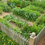 40 Stunning Vegetable Garden Design Ideas Perfect For Beginners (40)
